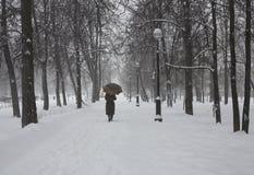 Sosta di inverno Immagini Stock Libere da Diritti