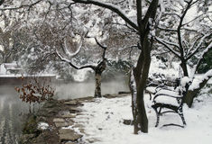 Sosta di inverno in neve Immagine Stock Libera da Diritti