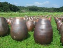 Sosta di pietra di Jeju Fotografia Stock