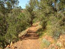 Sosta di Sedona, Arizona. fotografia stock libera da diritti