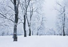 Sosta di Snowy Fotografia Stock