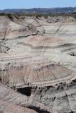 Sosta naturale della La Luna di Valle o di Ischigualasto de Fotografie Stock Libere da Diritti