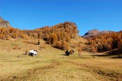 Sosta naturale di Alpe Devero Fotografie Stock