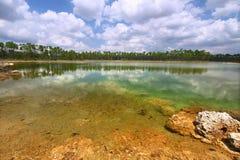 Sosta nazionale dei terreni paludosi - S.U.A. Fotografia Stock