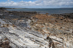 Sosta nazionale del capo roccioso, Tasmania, Australia Immagini Stock