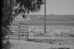 Sosta nazionale del Death Valley, California Fotografia Stock Libera da Diritti