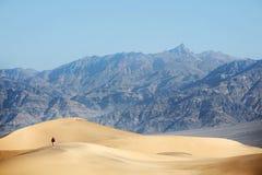 Sosta nazionale del Death Valley che fa un'escursione nel deserto Immagini Stock Libere da Diritti