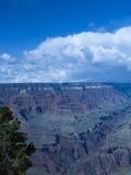 Sosta nazionale del grande canyon, Arizona, S Fotografie Stock