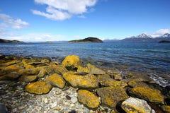 Sosta nazionale del Tierra del Fuego vicino a Ushuaia, immagini stock
