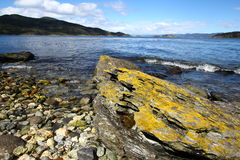 Sosta nazionale del Tierra del Fuego vicino a Ushuaia, Fotografia Stock