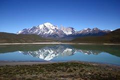 Sosta nazionale del Torres del Paine, Patagonia, Cile Fotografie Stock