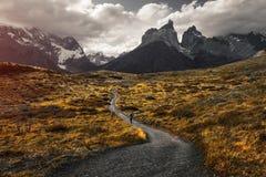 Sosta nazionale del Torres del Paine immagine stock