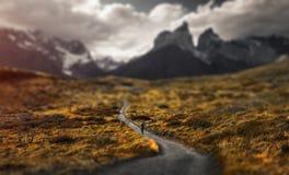 Sosta nazionale del Torres del Paine immagini stock libere da diritti