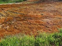 Sosta nazionale del Yellowstone Fotografie Stock Libere da Diritti