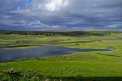Sosta nazionale del Yellowstone della valle di Hayden fotografia stock libera da diritti