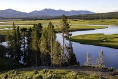 Sosta nazionale del Yellowstone della valle di Hayden Fotografie Stock Libere da Diritti