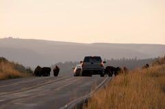 Sosta nazionale del Yellowstone, S fotografia stock