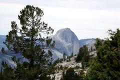 Sosta nazionale del Yosemite - California Immagine Stock
