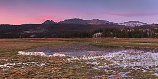 Sosta nazionale del Yosemite in California Fotografie Stock