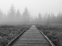 Sosta nazionale del Yosemite - percorso fotografia stock