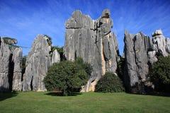 Sosta nazionale della foresta di pietra di Shilin Fotografia Stock Libera da Diritti