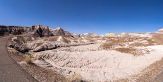 Sosta nazionale della foresta Petrified, Arizona Immagini Stock Libere da Diritti