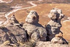 Sosta nazionale della foresta Petrified, Arizona Fotografie Stock