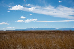 Sosta nazionale della montagna rocciosa Immagini Stock