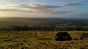 Sosta nazionale di Dartmoor Immagine Stock