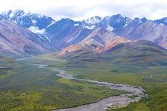 Sosta nazionale di Denali, Alaska Stati Uniti fotografia stock