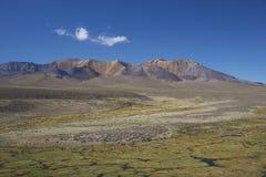 Sosta nazionale di Lauca, Cile Fotografia Stock Libera da Diritti