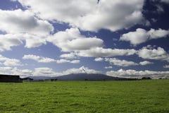 Sosta nazionale di Mt Taranaki Egmont Immagine Stock