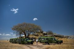 Sosta nazionale di Serengeti Fotografie Stock Libere da Diritti