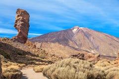 Sosta nazionale di Teide Tenerife, Isole Canarie Fotografia Stock Libera da Diritti