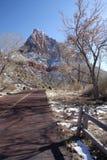 Sosta nazionale di Zion, Utah, S.U.A. immagine stock