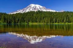 Sosta nazionale più piovosa del supporto, Washington fotografie stock libere da diritti