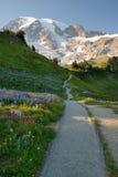 Sosta nazionale più piovosa della montagna Fotografia Stock Libera da Diritti
