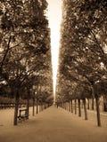 sosta a Parigi fotografie stock