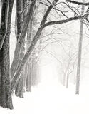 Sosta piacevole in inverno fotografie stock libere da diritti