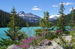 Sosta provinciale dei laghi Joffre fotografia stock