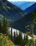 Sosta provinciale del ghiacciaio di Kokanee, Columbia Britannica, Canada Fotografie Stock Libere da Diritti