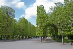 Sosta Schonbrunn Immagine Stock