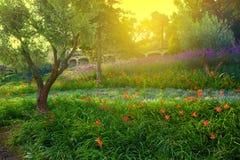 Sosta variopinta con i fiori Fotografia Stock Libera da Diritti