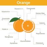 Sostanza nutriente arancio dei fatti e delle indennità-malattia, frutta del grafico di informazioni Fotografie Stock
