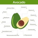Sostanza nutriente dell'avocado dei fatti e delle indennità-malattia, grafico di informazioni Fotografia Stock Libera da Diritti