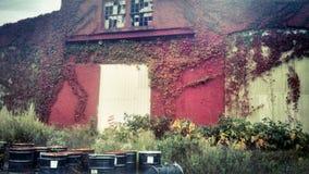 Sostanza tossica di costruzione abbandonata Fotografie Stock