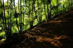 Soste e giardini fotografia stock libera da diritti