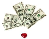 Sostenedor de la tarjeta de visita con los dólares Imágenes de archivo libres de regalías
