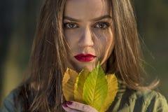 Sostener las hojas de otoño Imagen de archivo libre de regalías