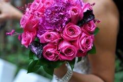 Sostener rosas rosadas Fotografía de archivo